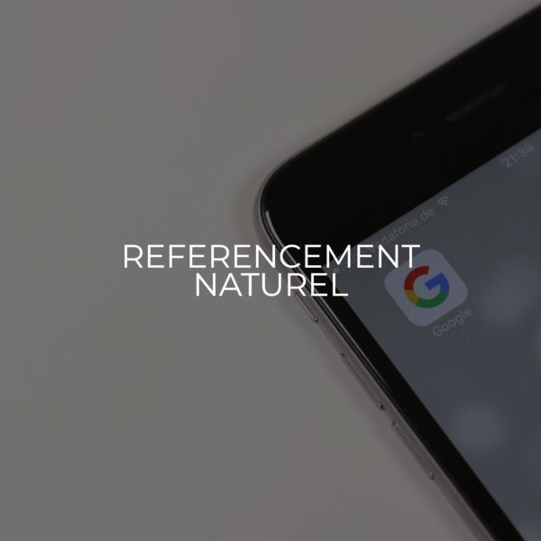 Referencement naturel - SEO PICKERS